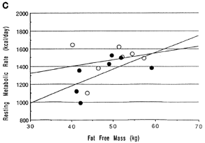 resting metabolic rate fat free mass