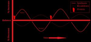 AF Graph - PRO 02
