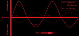 AF Graph - PRO 03