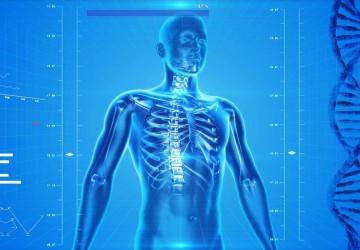 Idoate & Izquierdo 2010 & 2011 mri visceral adipose fat weight lifting diet research study